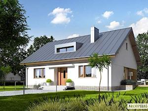 Projekt domu Swen
