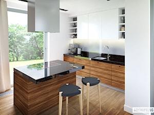 Projekt Domu Olaf G2 ENERGO PLUS - Wizualizacja Kuchni - zdjęcie od ARCHIPELAG Pracownia Projektowa