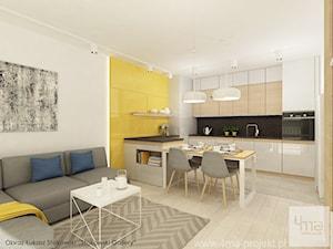Projekt mieszkania o pow. 55,5 m2 w Wilanowie.