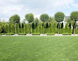 na Słonecznej - Duży ogród za domem, styl minimalistyczny - zdjęcie od kamila_lbn