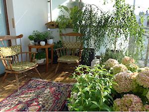 Kwiaty na balkon całoroczne – jakie rośliny wieloletnie wybrać na balkon?
