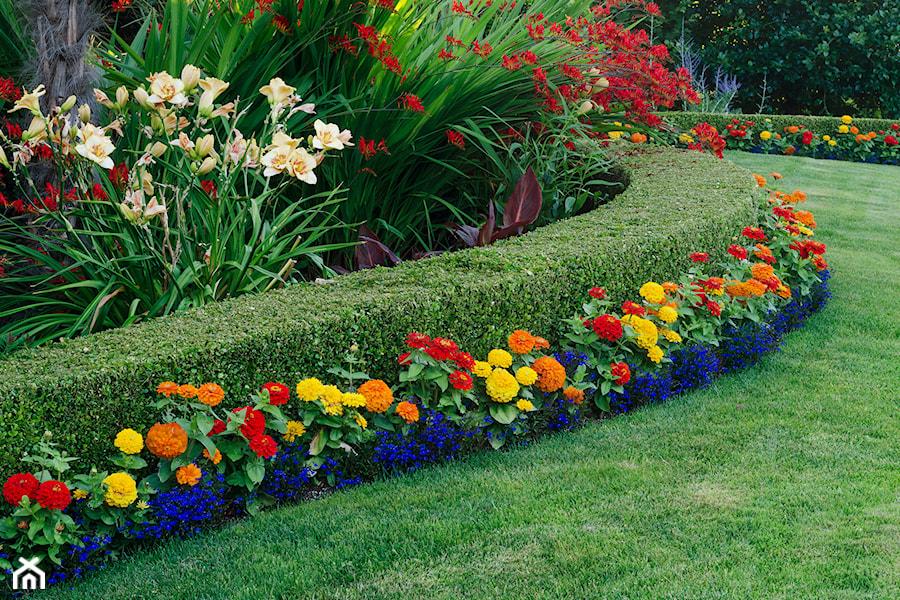 Aranżacje wnętrz - Ogród: Ogród, styl tradycyjny - Anna Pe. Przeglądaj, dodawaj i zapisuj najlepsze zdjęcia, pomysły i inspiracje designerskie. W bazie mamy już prawie milion fotografii!