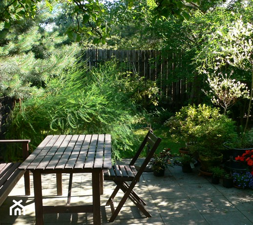Ogród deszczowy – co to jest i jak go założyć?