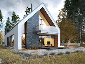 IDEALNY 1 - nowoczesna stodoła z dwustanowiskowym garażem