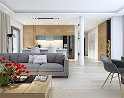 DOBRY+3+-+salon+-+zdj%C4%99cie+od+DOMY+Z+WIZJ%C4%84+-+nowoczesne+projekty+dom%C3%B3w