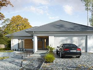 DOBRY 3 - niewielki dom parterowy
