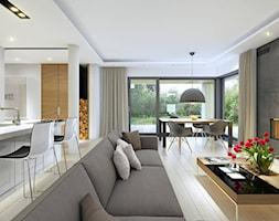 DOBRY 1 - niewielki dom parterowy z garażem - Duży szary biały salon z kuchnią z jadalnią z tarasem / balkonem, styl nowoczesny - zdjęcie od DOMY Z WIZJĄ - nowoczesne projekty domów