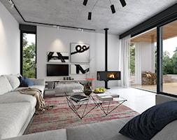 Projekt domu PARTEROWY 1A | Domy z Wizją - zdjęcie od DOMY Z WIZJĄ - nowoczesne projekty domów - Homebook