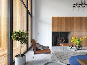 Uniwersalny 1 - tradycyjna forma, współczesne materiały - Salon, styl minimalistyczny - zdjęcie od DOMY Z WIZJĄ - nowoczesne projekty domów