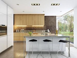 PARTEROWY 1 - nowoczesny dom parterowy z płaskim dachem - Duża otwarta biała brązowa kuchnia w kształcie litery l z wyspą, styl nowoczesny - zdjęcie od DOMY Z WIZJĄ - nowoczesne projekty domów
