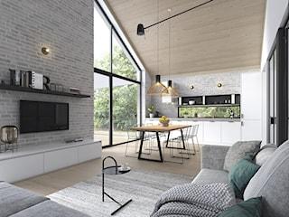 RADOSNY 3 - mały dom parterowy w typie nowoczesnej stodoły