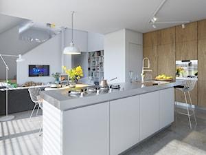 EKONOMICZNY 2B - dom z antresolą - Średnia otwarta wąska biała kuchnia jednorzędowa z wyspą, styl skandynawski - zdjęcie od DOMY Z WIZJĄ - nowoczesne projekty domów