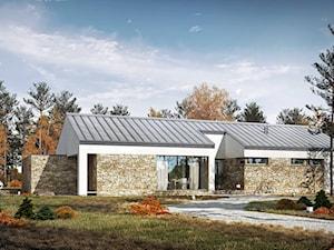 RODZINNY 1 - dom parterowy z dachem dwuspadowym