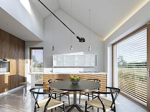 EKONOMICZNY 1 - zdjęcie od DOMY Z WIZJĄ - nowoczesne projekty domów