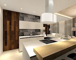 Projekt domu 2 - Duża otwarta szara kuchnia w kształcie litery u w aneksie z wyspą, styl nowoczesny - zdjęcie od MKdezere