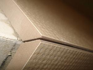 Dziubich i Wnętrza - Firma remontowa i budowlana