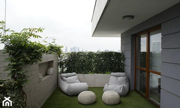 rośliny dające cień na balkonie