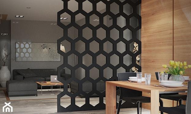 salon z jadalnią w stylu nowoczesnym