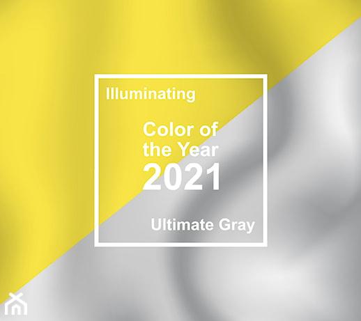 Kolory roku 2021 wg Instytutu Pantone – jak sprawdzą się we wnętrzach?