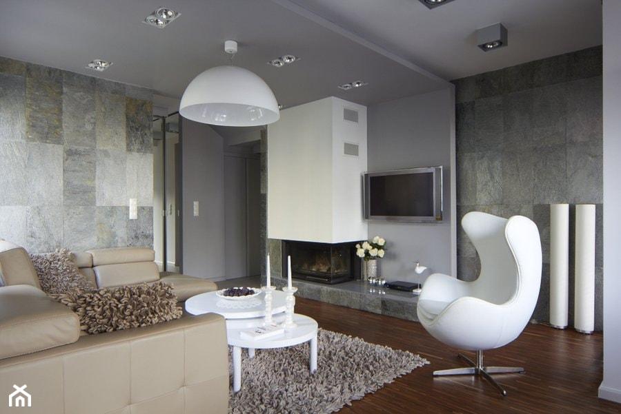 Salon Z Kamieniem Dekoracyjnym Na ścianie Aranżacje