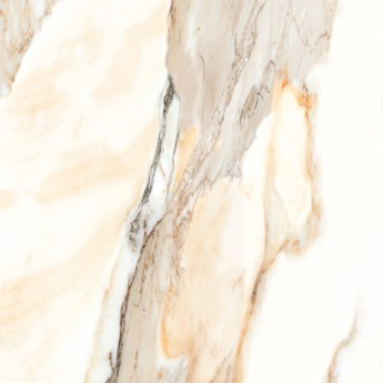 Calacatta gold 60 x 60