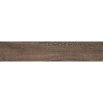 Płytka Catalea nugat 900x175x8mm