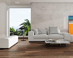 Softcement - Salon, styl minimalistyczny - zdjęcie od Cerrad - Homebook