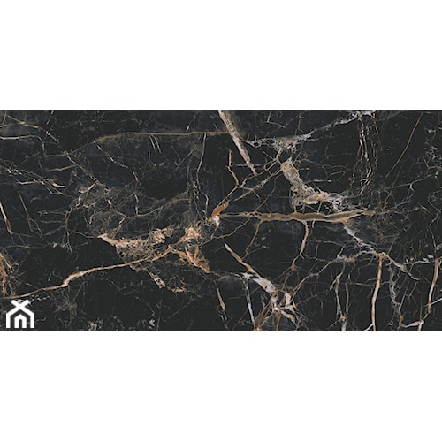Marquina gold 60 x 120