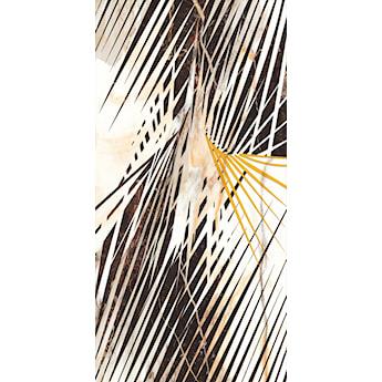 Calacatta gold 60 x 120