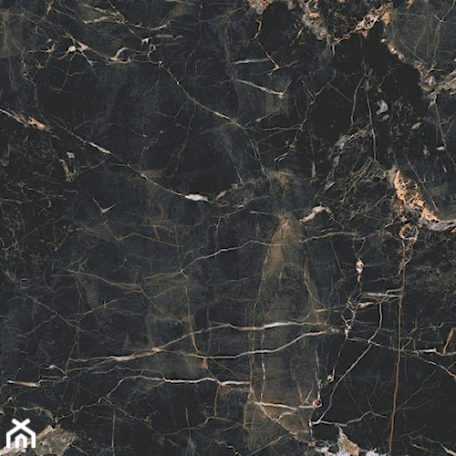 Marquina gold 60 x 60
