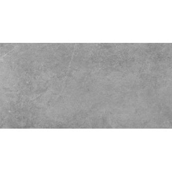 Tacoma silver