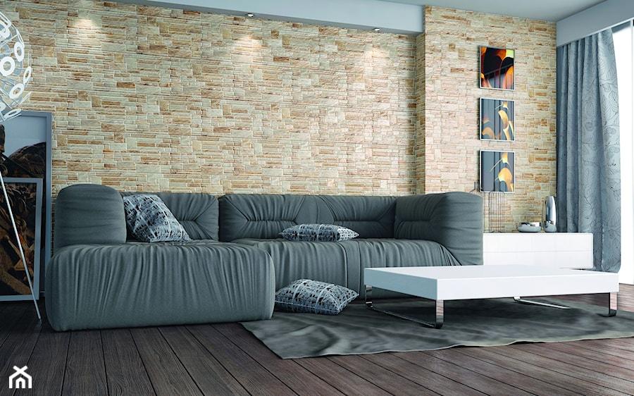 Kamień kolekcja Canella - Salon - zdjęcie od Cerrad