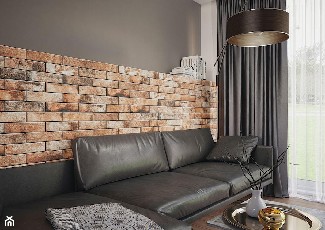 czerwona cegła, imitacja cegły w salonie, ściana z cegły