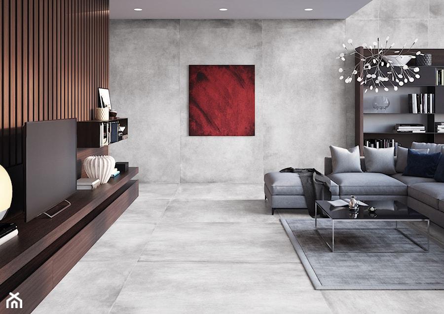 Kolekcja Concrete - Duży szary beżowy salon z bibiloteczką, styl eklektyczny - zdjęcie od Cerrad