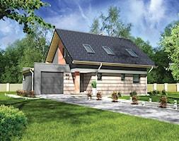 Imagini pentru roof