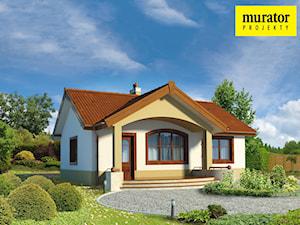 Projekt Domu - Murator C272 - Filigranowy