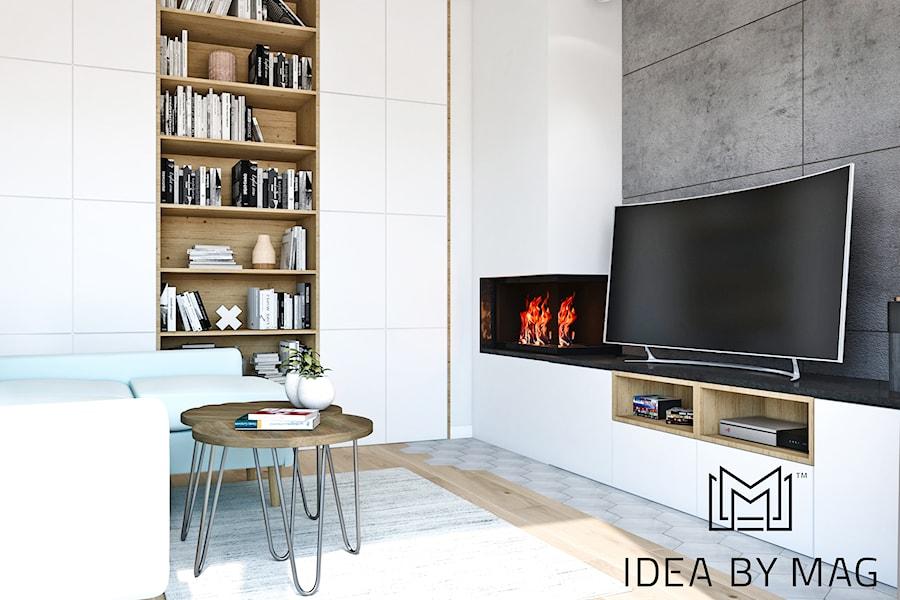 Segment. - Mały szary biały salon, styl skandynawski - zdjęcie od Idea by Mag.