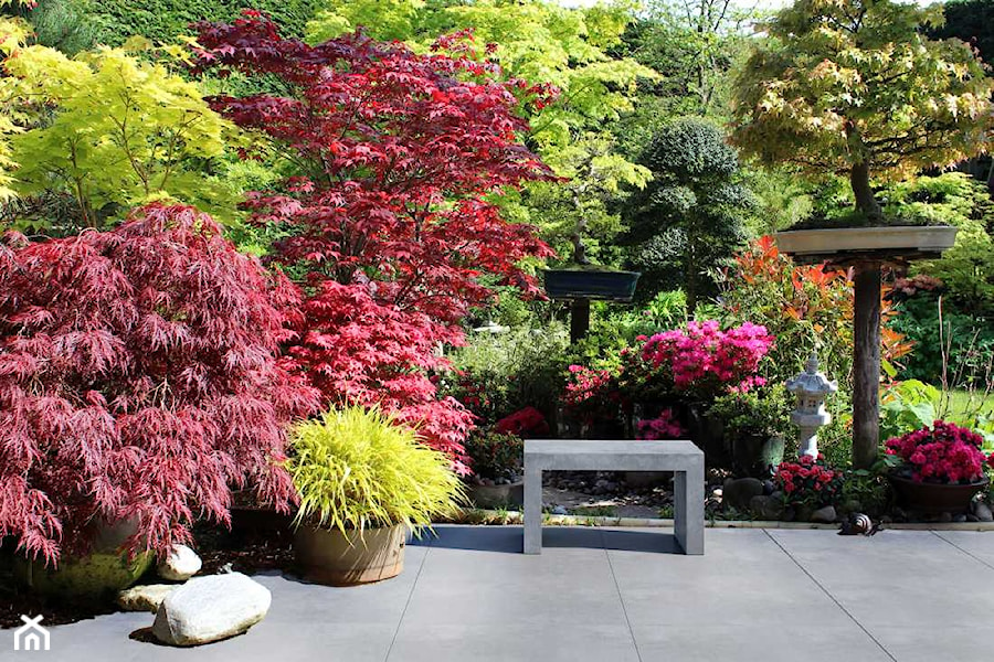 Aranżacje wnętrz - Ogród: Ława Regular - Średni ogród japoński - Modern Line. Przeglądaj, dodawaj i zapisuj najlepsze zdjęcia, pomysły i inspiracje designerskie. W bazie mamy już prawie milion fotografii!