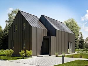 Projekt domu letniskowego - House S