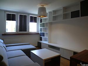 Generalny remont małego mieszkania - Kuchnia otwarta na salon