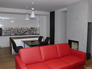 Apartament w Krakowie  - projekt i realizacja