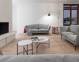 Carrara - Średni szary salon, styl minimalistyczny - zdjęcie od emDesign home & decoration - Homebook