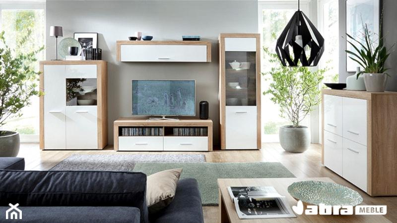 Quattro Mobili Kolekcja Własna Abra Meble Projekt Wnętrza