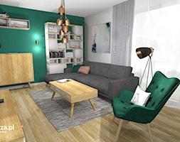 Salon+-+zdj%C4%99cie+od+e-wnetrza.pl
