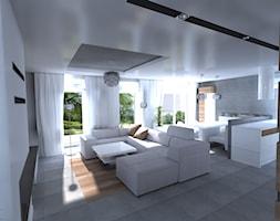 Salon+-+zdj%C4%99cie+od+Interior+Design+A3D+Architekci+Krzysztof+Gruszfeld