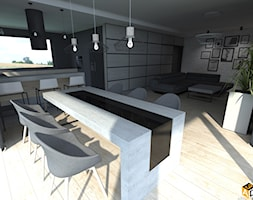Kuchnia+-+zdj%C4%99cie+od+Interior+Design+A3D+Architekci+Krzysztof+Gruszfeld