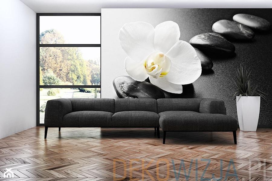 Fototapeta Biały storczyk na kamieniach zen  zdjęcie od   -> Fototapety Kuchenne Storczyk