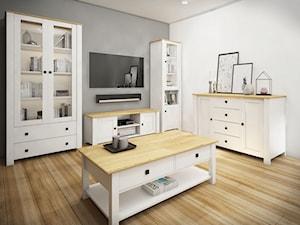 Meble skandynawskie - Średni szary biały salon - zdjęcie od Meble Bryś
