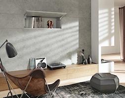 Szafki górne z podnośnikami AVENTOS - Salon, styl nowoczesny - zdjęcie od Blum - Homebook
