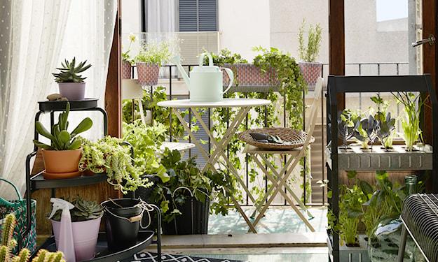 mały zestaw na balkon